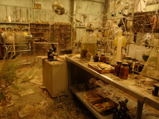 http://www.setdecorators.org/sites/setdecorators/TEEN%20WOLF/LABhero3.JPG